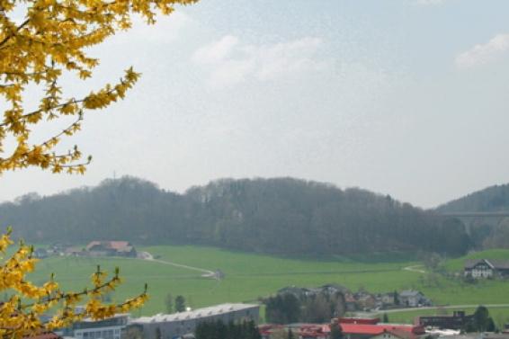 Hallwang near Salzburg
