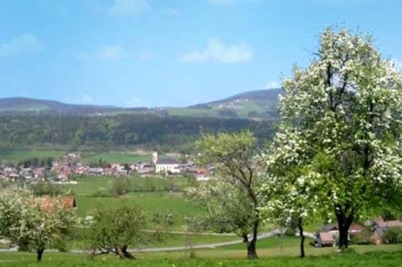 Thalgau near Salzburg