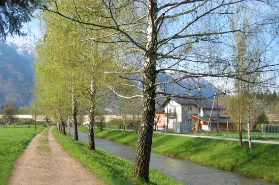 Wals bei Salzburg