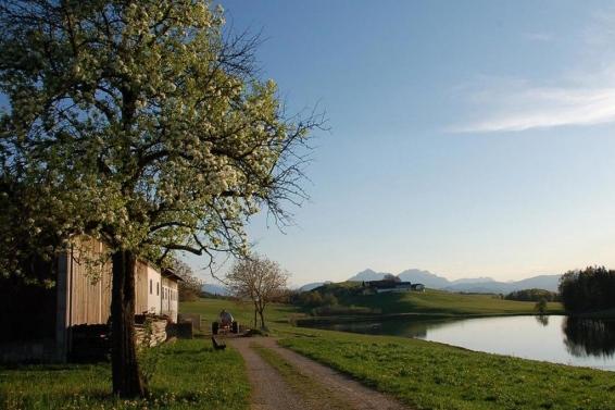 Elixhausen near Salzburg