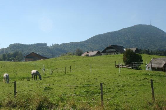 Koppl near Salzburg