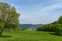Göming near Oberndorf