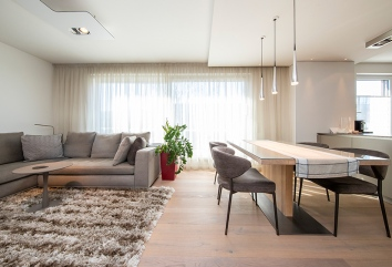 Apartment with terrace Style Icon
